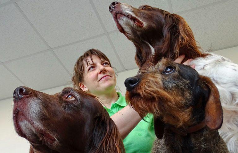 Heidi Pasche und Hunde